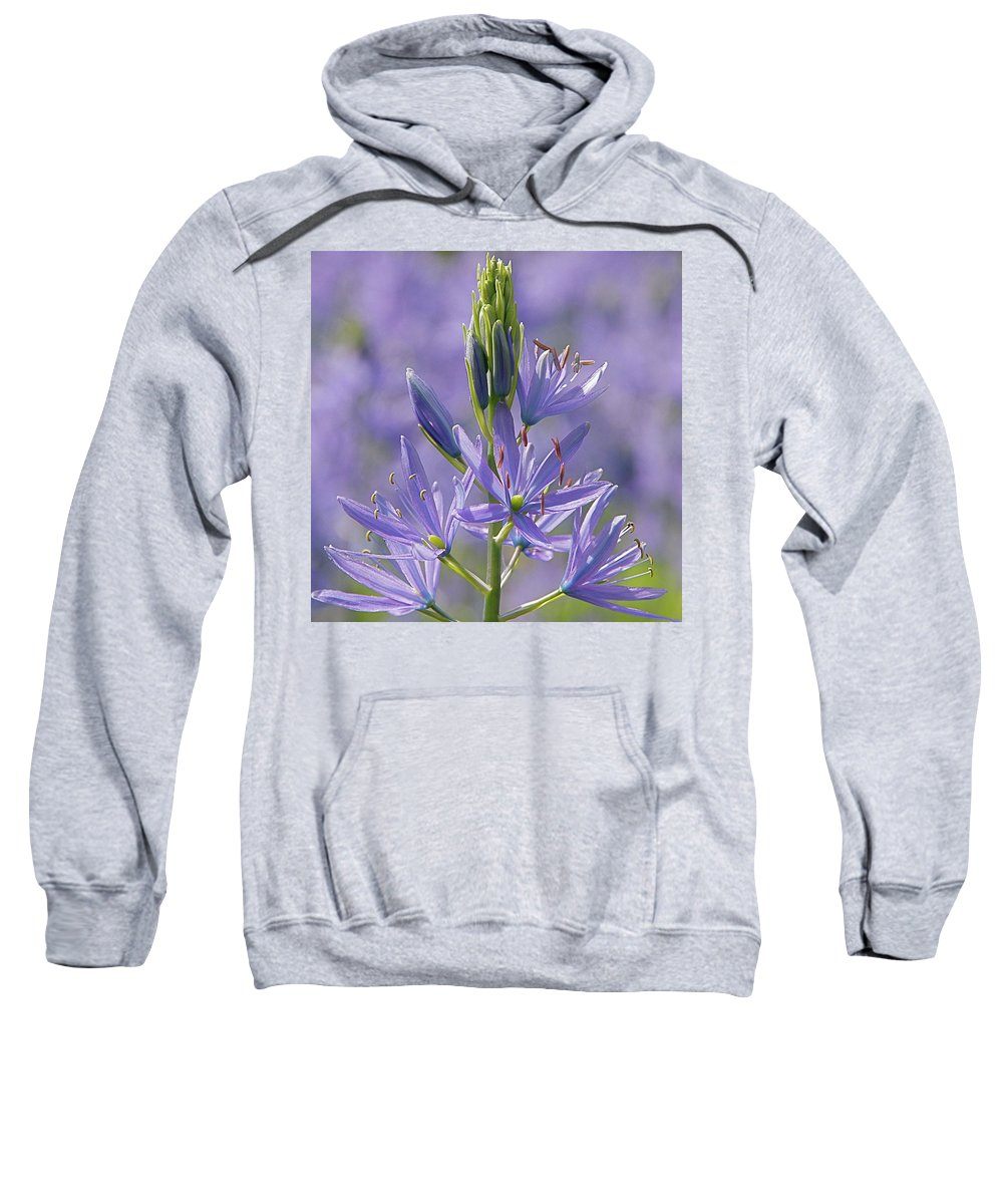 Floral Sweatshirt featuring the photograph Heavenly Blue Camassia by Byron Varvarigos