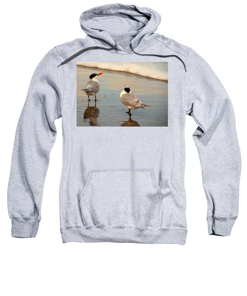 Wildlife Sweatshirt featuring the photograph Her New Boyfriend by Susanne Van Hulst