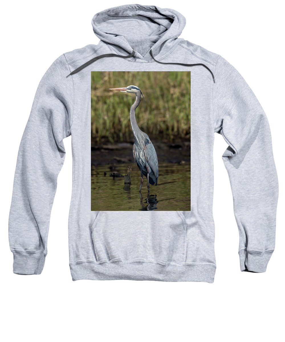 Blue Sweatshirt featuring the photograph Heron by KenDidIt Photography