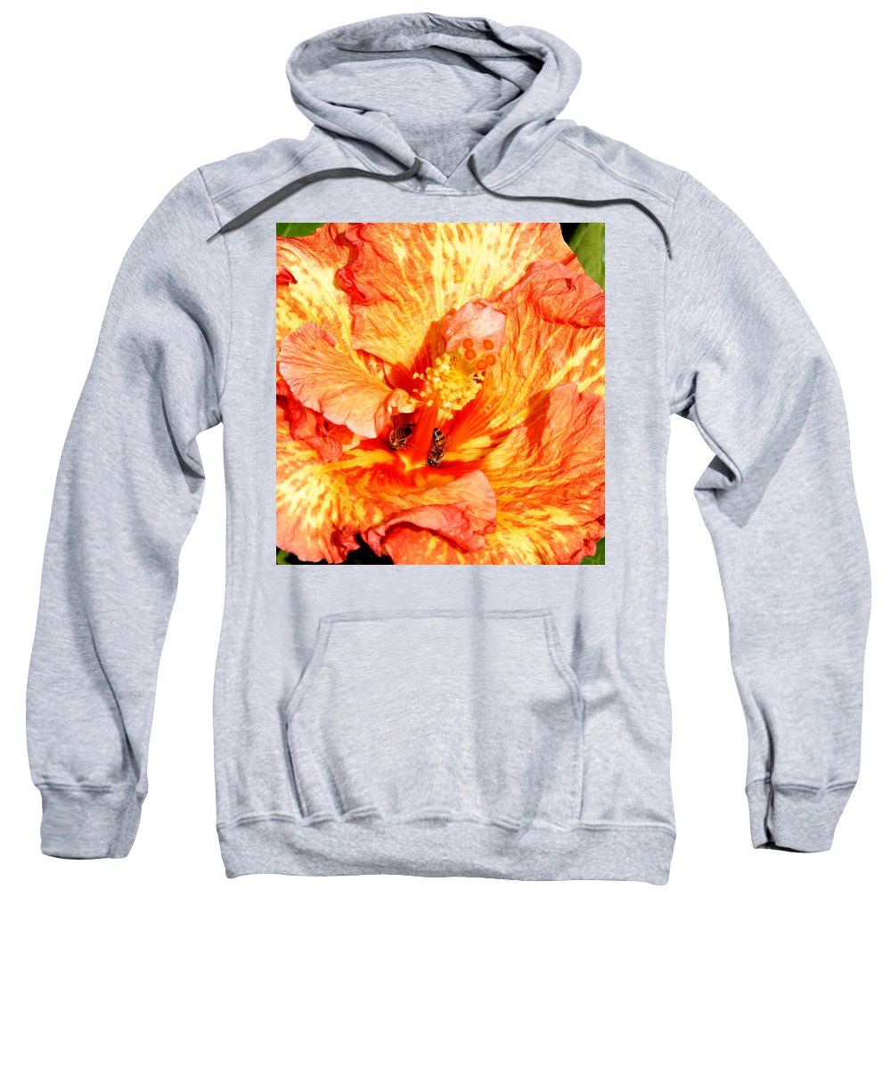 Bees Sweatshirt featuring the photograph Hibiscus And Bees by Anthony Jones