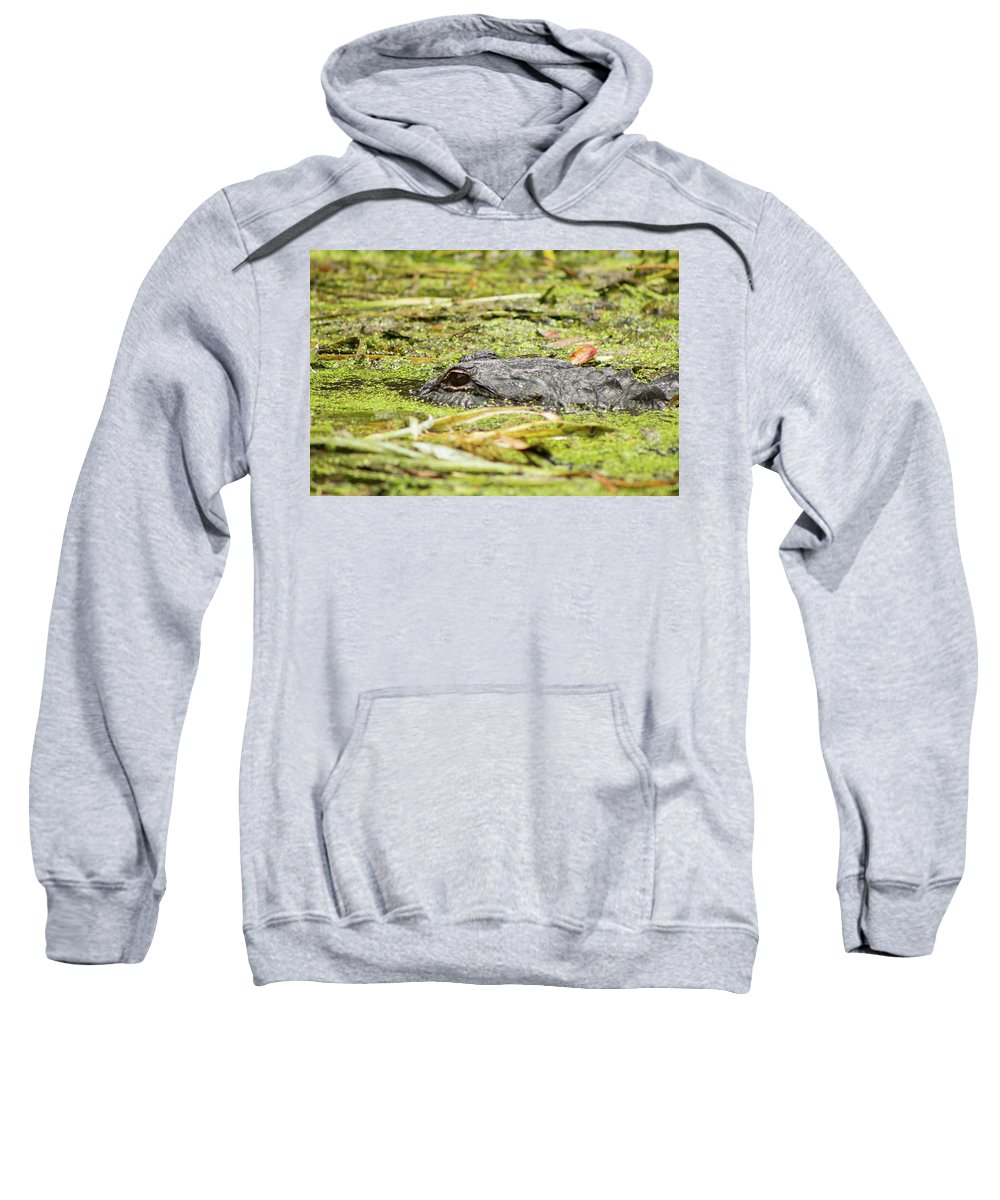 Nature Sweatshirt featuring the photograph Hidden by Kat Muyres