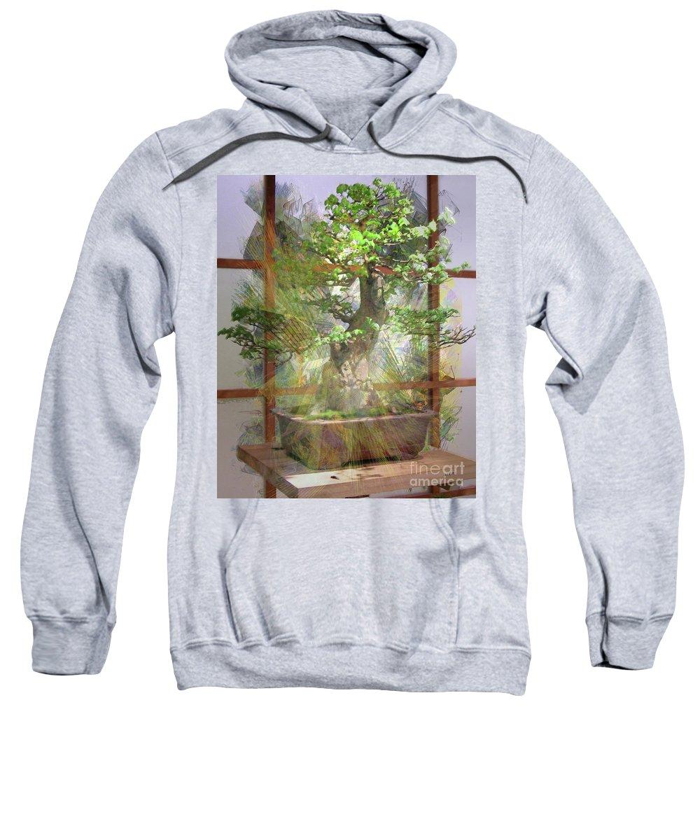 Hidden Treasures Sweatshirt featuring the digital art Hidden Treasures by John Beck