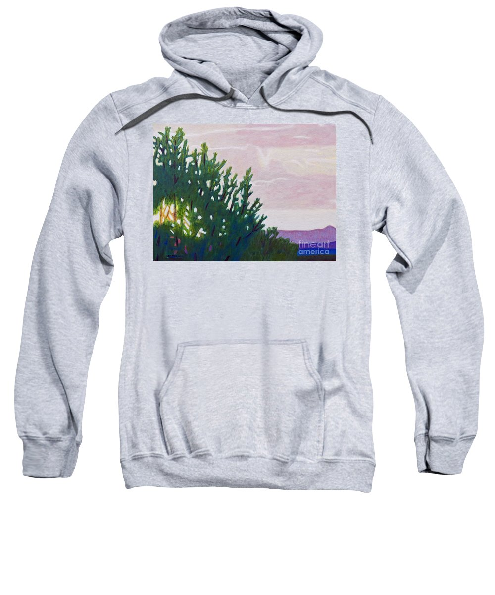Landscape Sweatshirt featuring the painting High Desert Glow by Brian Commerford