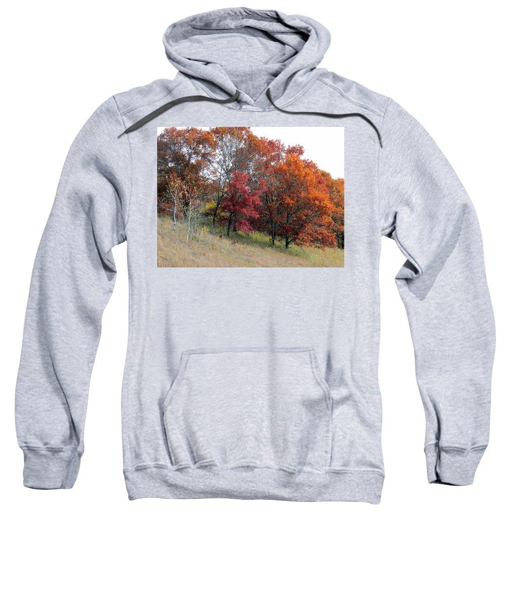 Fall Sweatshirt featuring the photograph Hillside by Joni Moseng