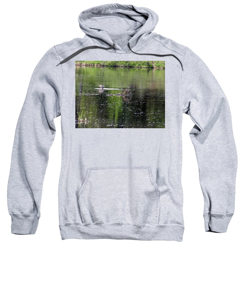 Mallards Sweatshirt featuring the photograph Him Showing Off by William Tasker