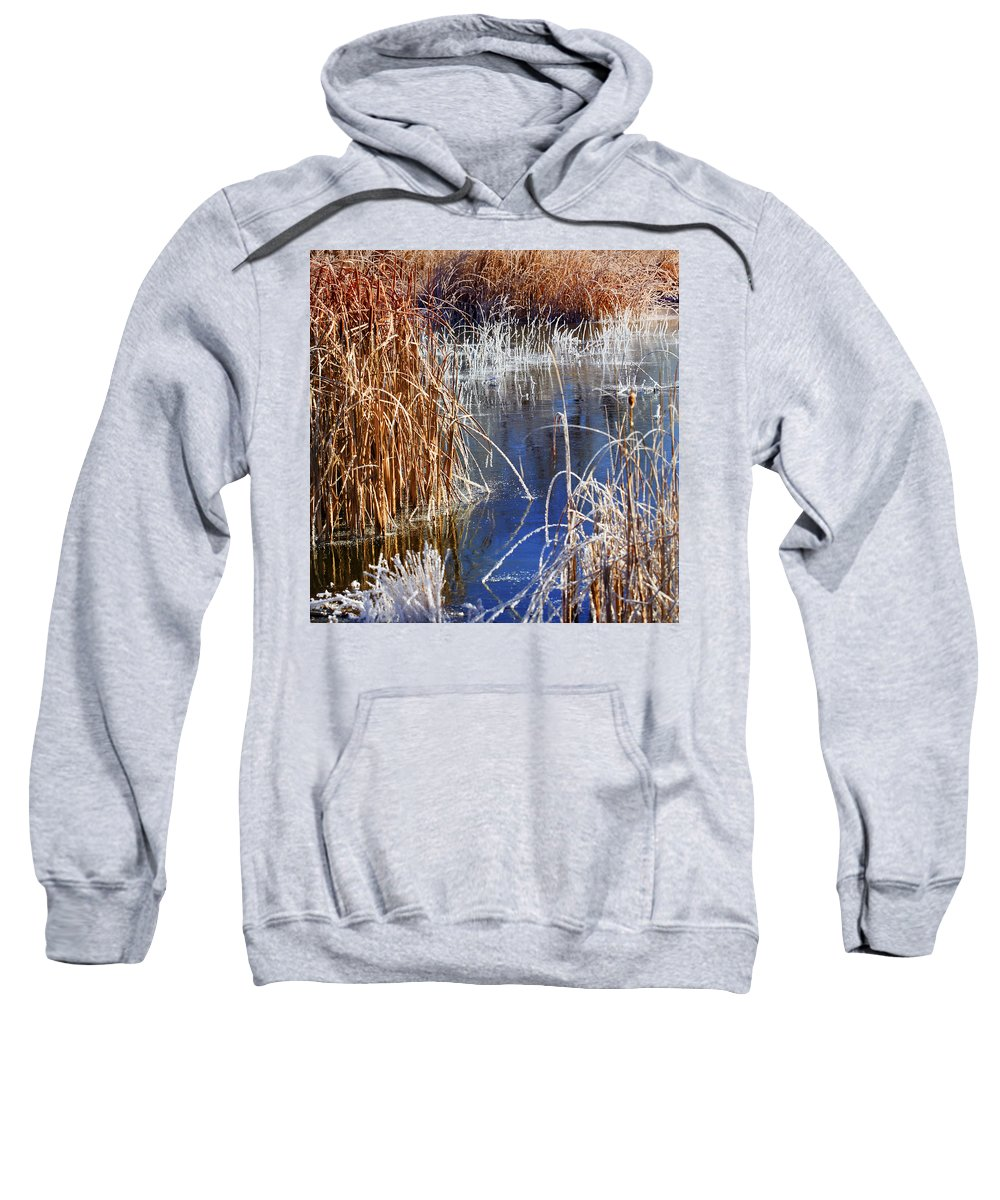 Hoar Frost Sweatshirt featuring the photograph Hoar Frost On Reeds by Marilyn Hunt
