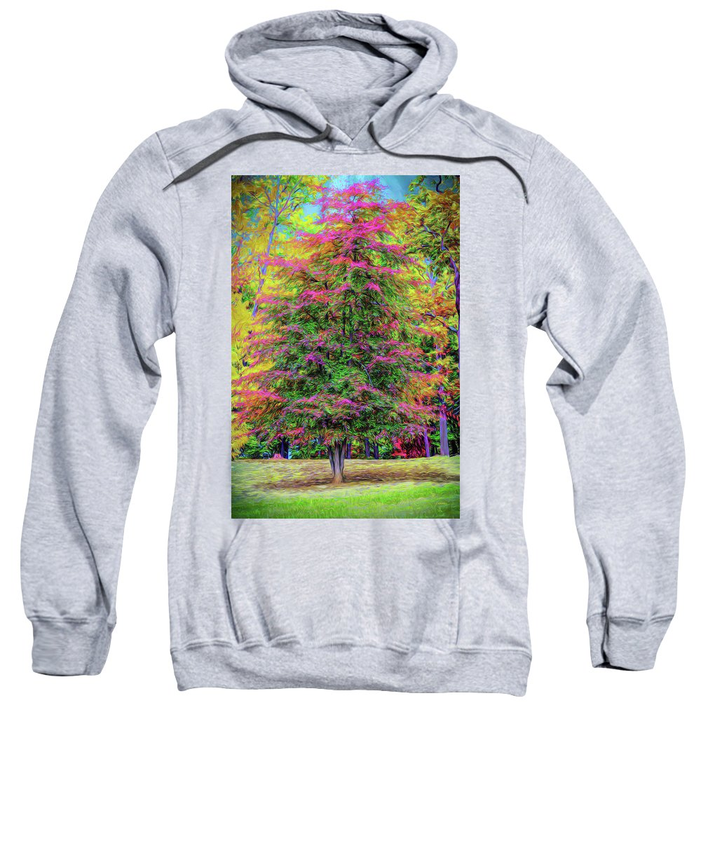 Landscape Sweatshirt featuring the photograph Holly Jolly Tree by John M Bailey