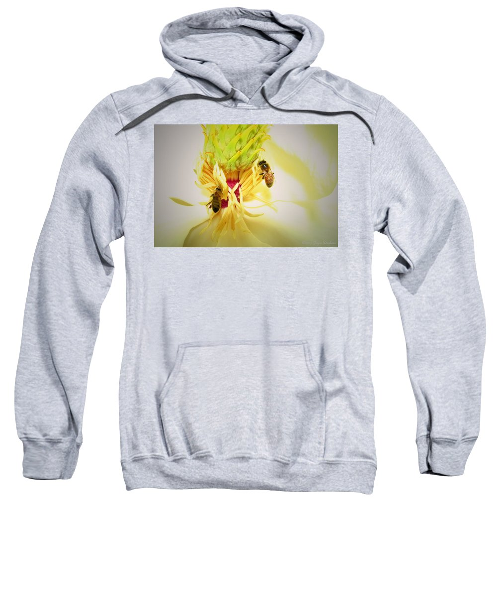 Honey-bees Sweatshirt featuring the photograph Honey Bees And Magnolia by Joyce Dickens