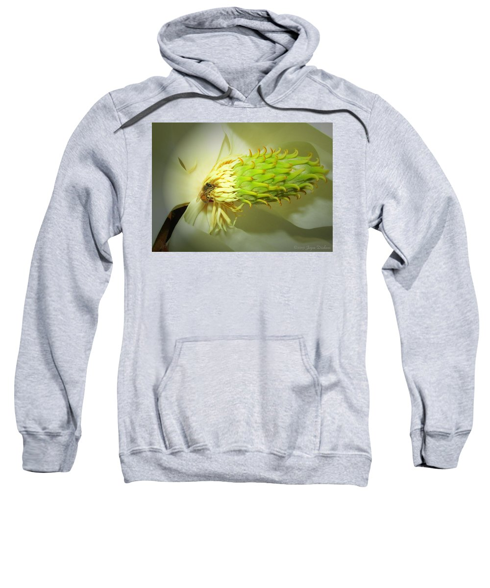 Honey-bees Sweatshirt featuring the photograph Honey Bees And Magnolia Three by Joyce Dickens
