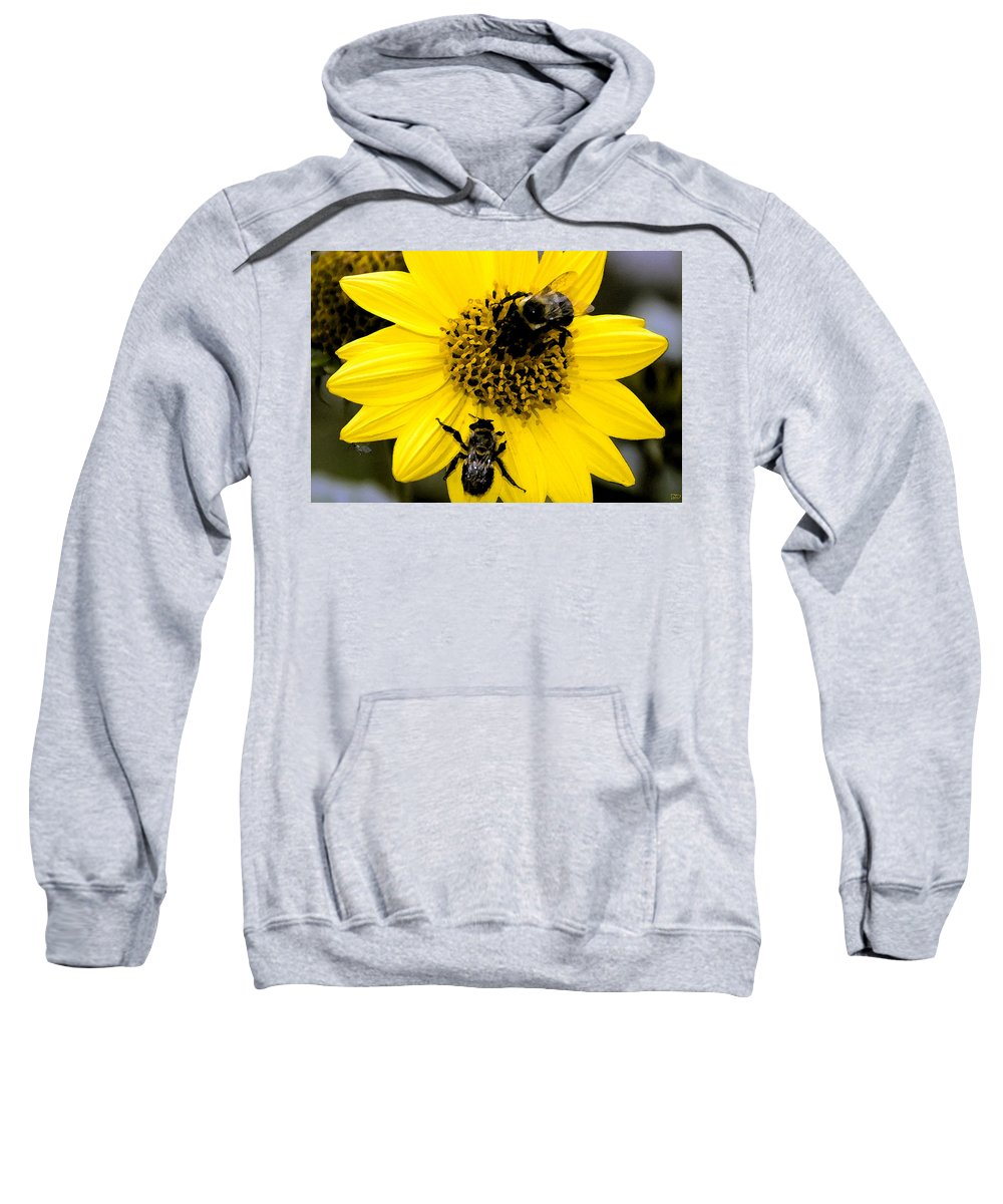 Honey Bees Sweatshirt featuring the painting Honey Bees by David Lee Thompson