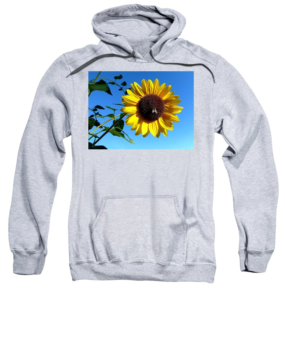 Honeybee Sweatshirt featuring the photograph Honeybee On A Sunflower by Will Borden