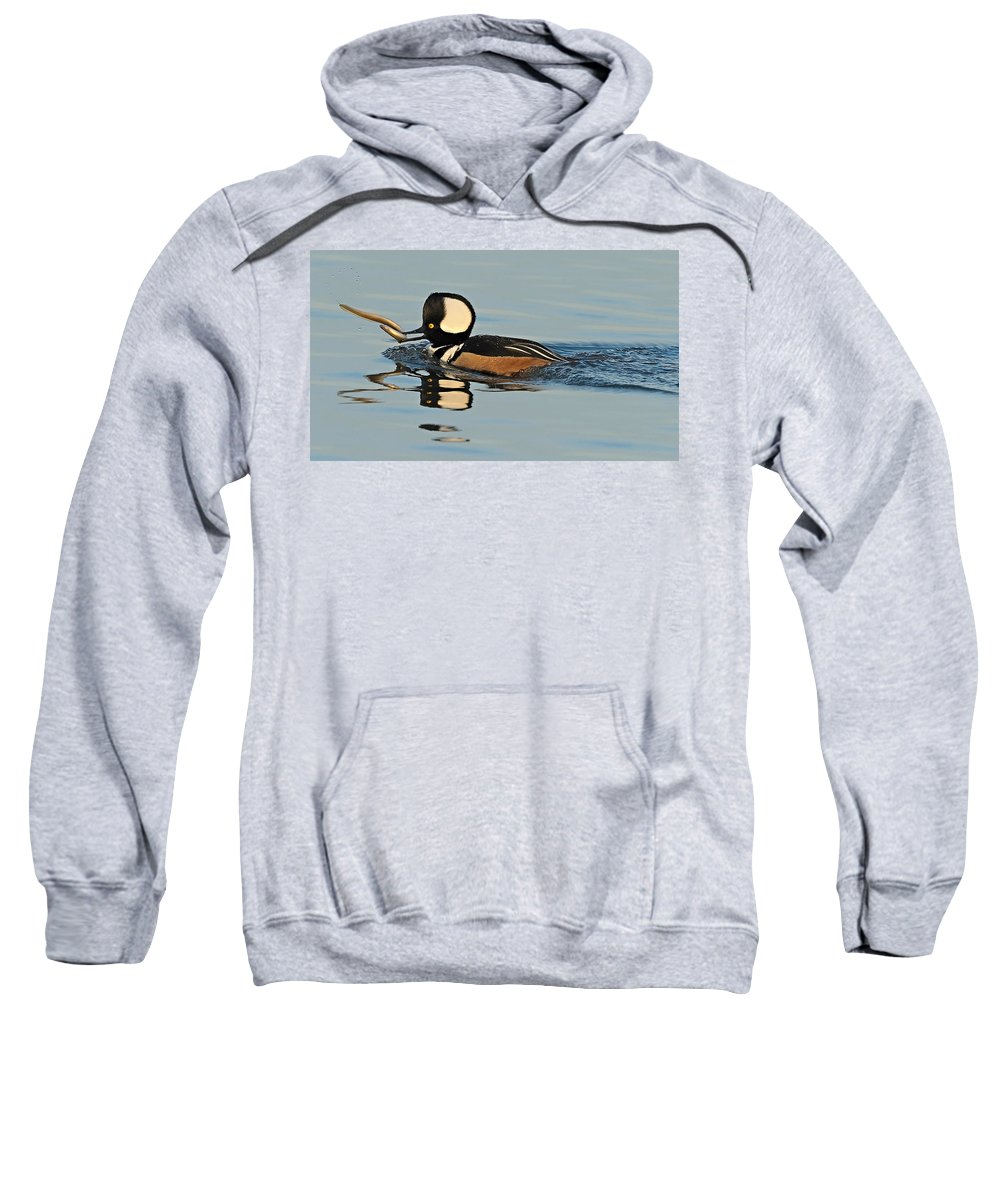 Merganser Sweatshirt featuring the photograph Hooded Merganser And Eel by William Jobes