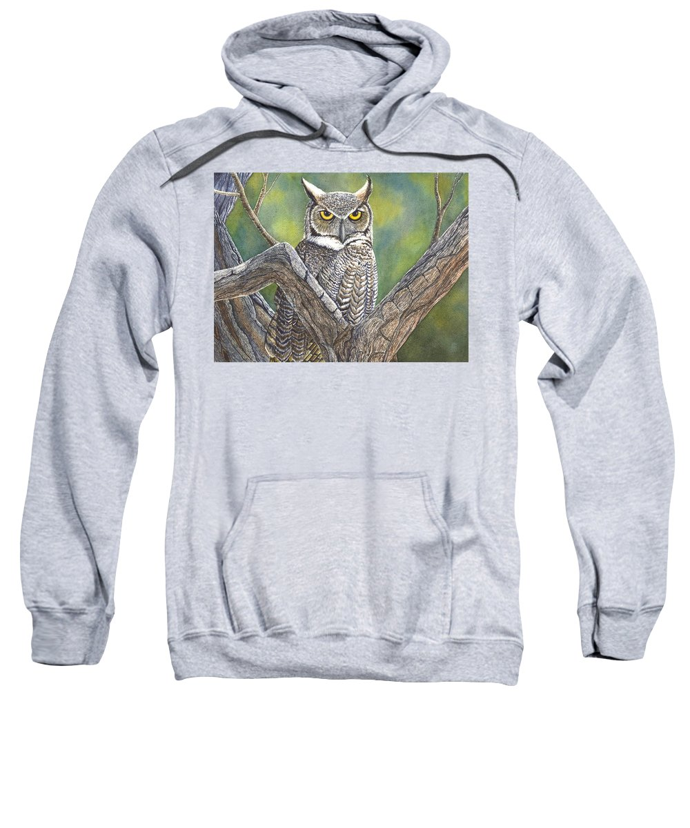 Owl Sweatshirt featuring the painting Hooter by Catherine G McElroy