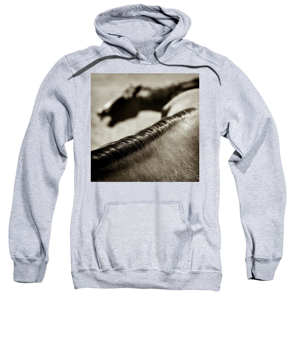 Horses Sweatshirt featuring the photograph Horse Play by Dave Bowman