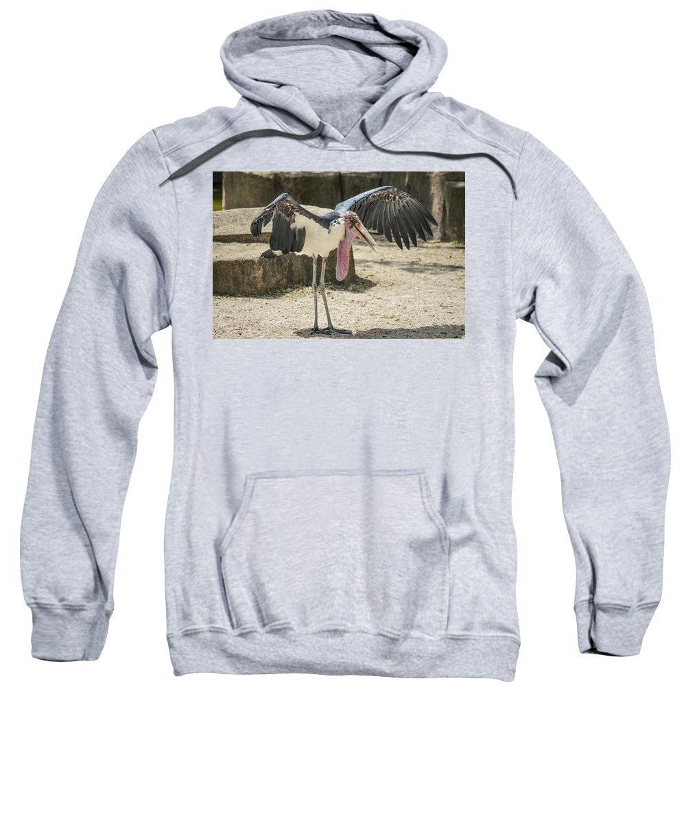Stork Sweatshirt featuring the photograph How About A Hug? by Robert Coffey