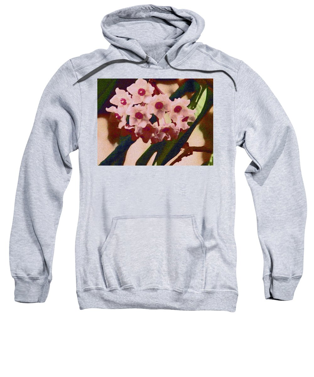 Abstract Sweatshirt featuring the photograph Hoya 2 by Lenore Senior