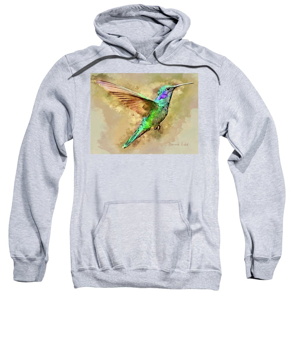 Hummingbird Sweatshirt featuring the mixed media Humdinger by Dave Lee