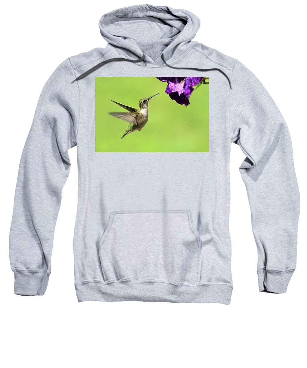 Bird Sweatshirt featuring the photograph Hummingbird by Lou Ford