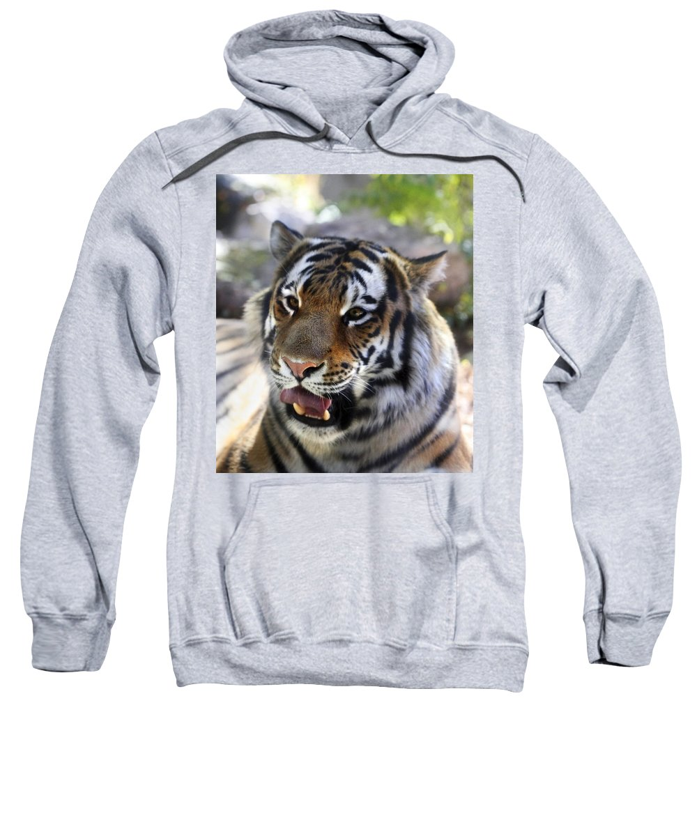 Animal Sweatshirt featuring the photograph Hungry Eyes by Marilyn Hunt