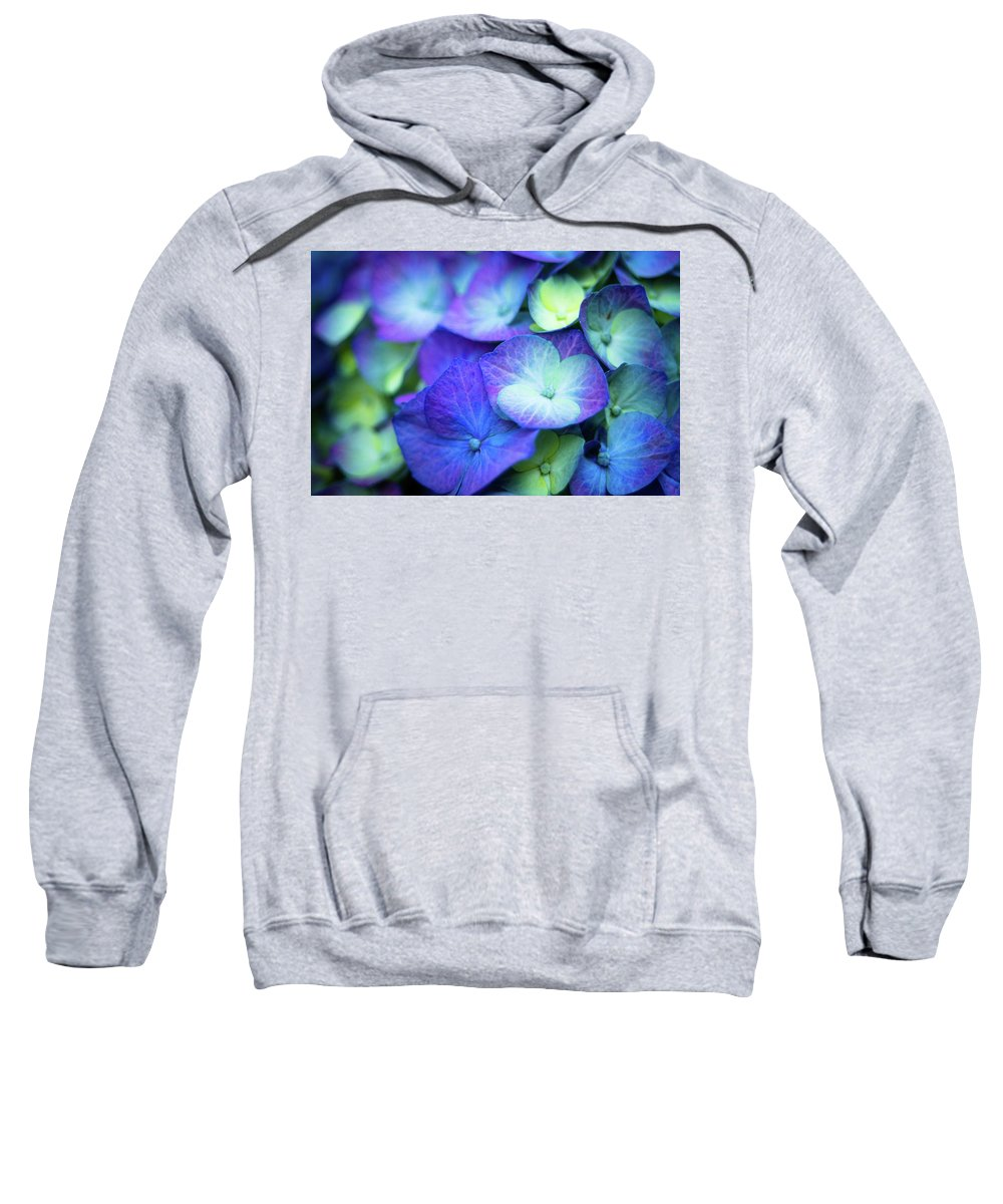 Blossom Sweatshirt featuring the photograph Hydrangea - Purple And Green by Geoffrey Moore
