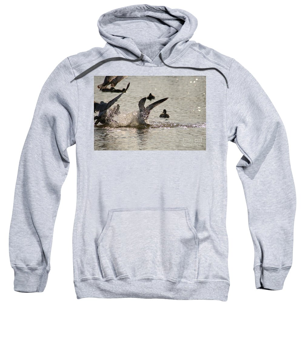 Clay Sweatshirt featuring the photograph Hysteria by Clayton Bruster