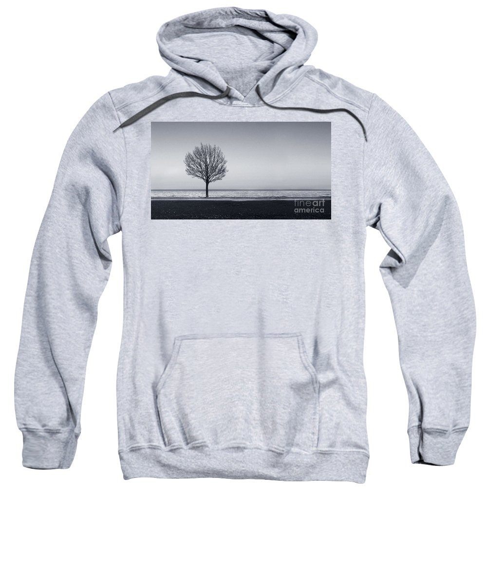Tree Sweatshirt featuring the photograph I Didnt Hear You Leaving by Dana DiPasquale