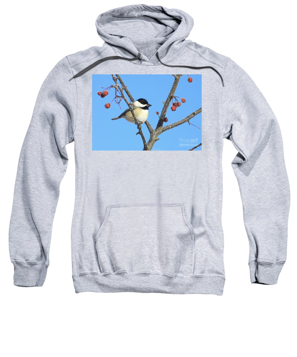 Bird Sweatshirt featuring the photograph I Got My Seed by Deborah Benoit
