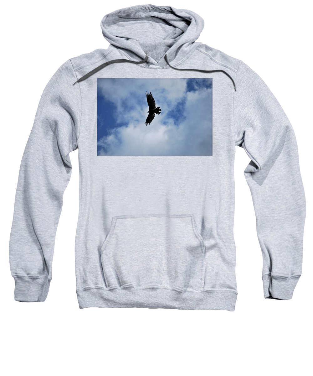 Bird Sweatshirt featuring the photograph I Love The View From Up Here by Lori Tambakis