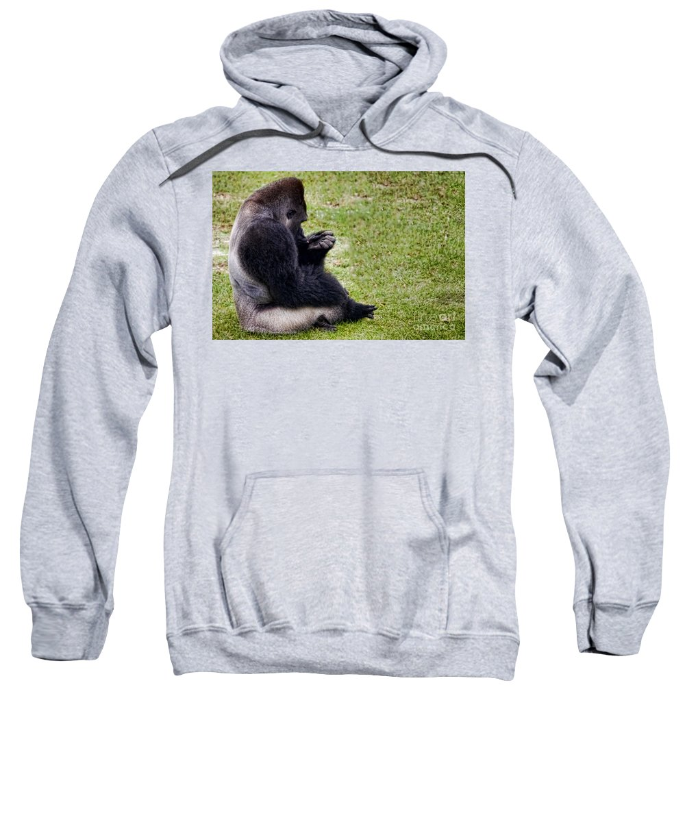 Gorilla Sweatshirt featuring the photograph I Need A Manicure by Gaby Swanson