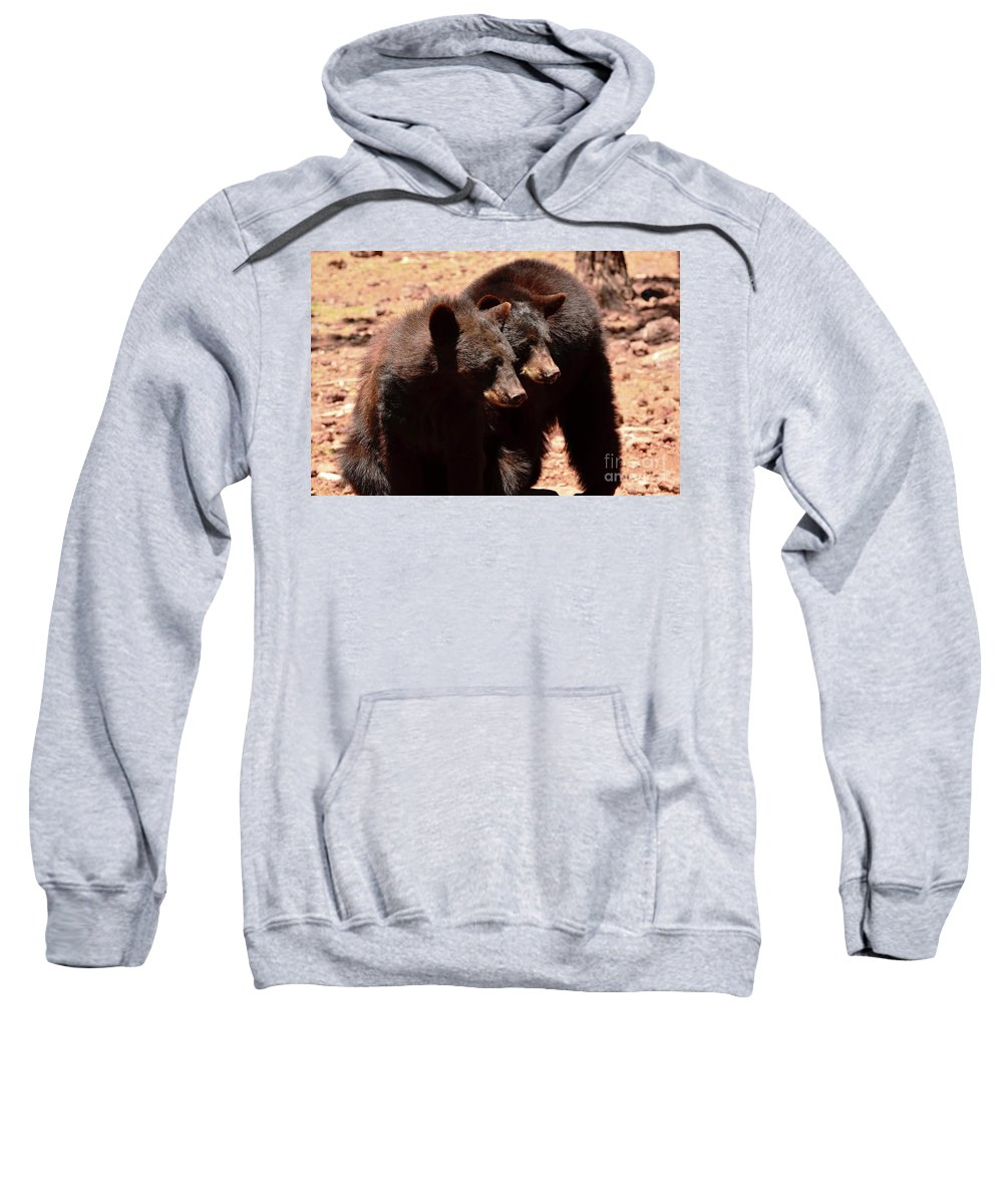 Bears Sweatshirt featuring the photograph I Wont Tell Mom If You Dont by Debby Pueschel