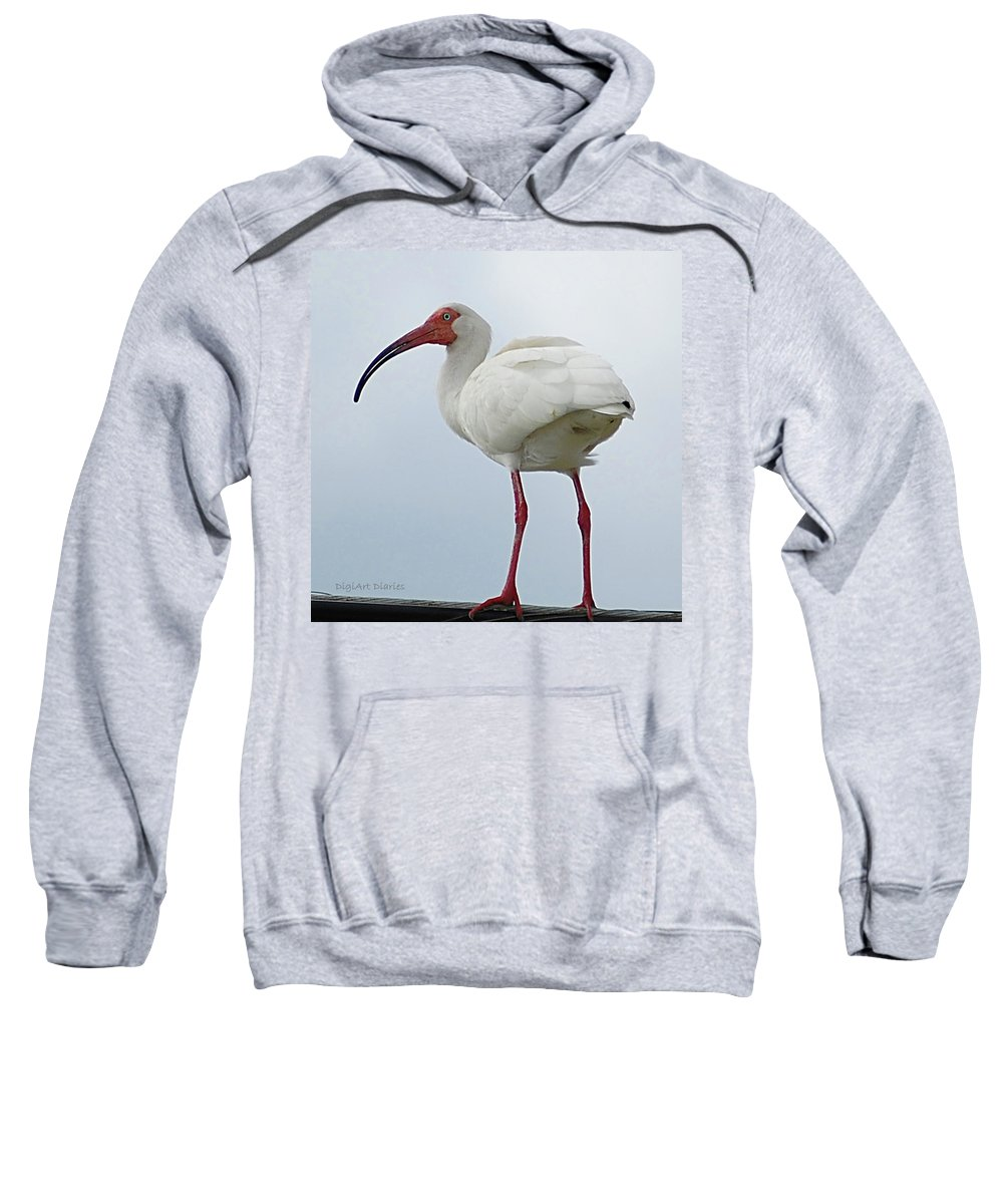 Bird Sweatshirt featuring the digital art Ibis In The Morning by DigiArt Diaries by Vicky B Fuller