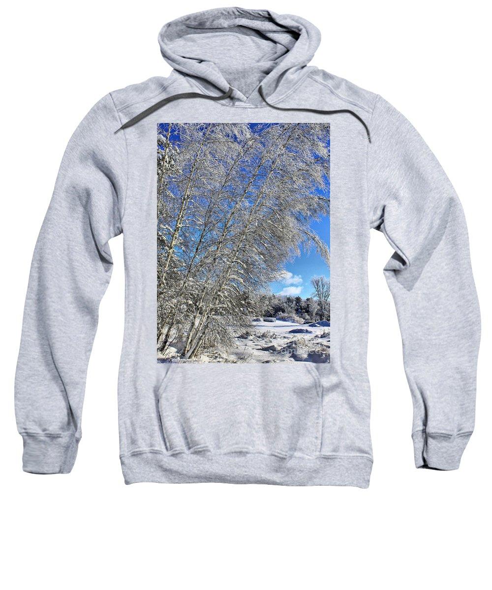 Snow Sweatshirt featuring the photograph Ice Laden Birches by Deborah Benoit