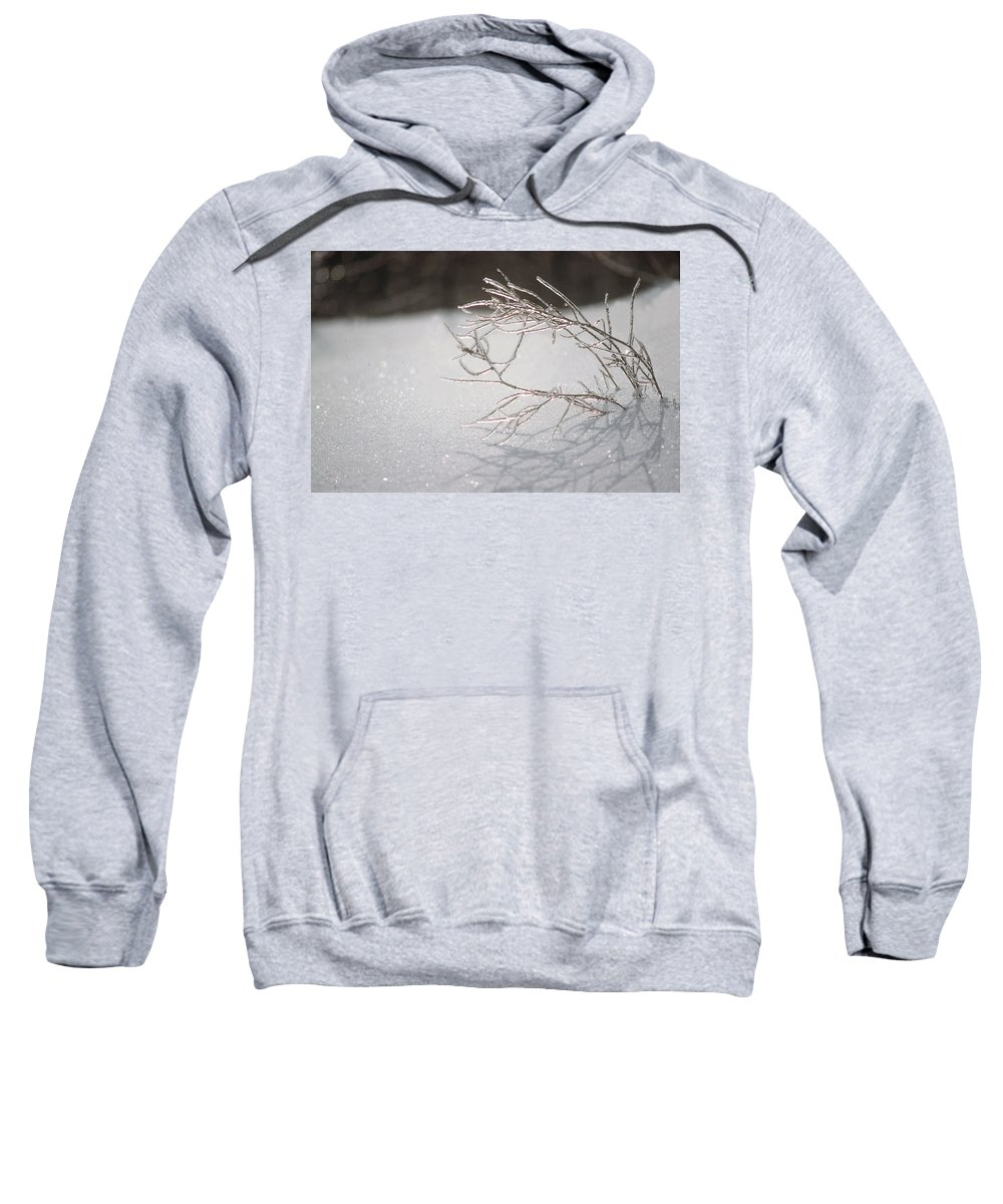 Ice Sweatshirt featuring the photograph Iced by D'Arcy Evans