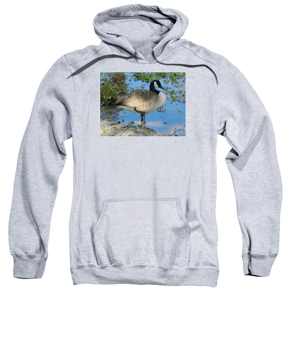 Goose Sweatshirt featuring the photograph I'm Beautiful by ML Everhart