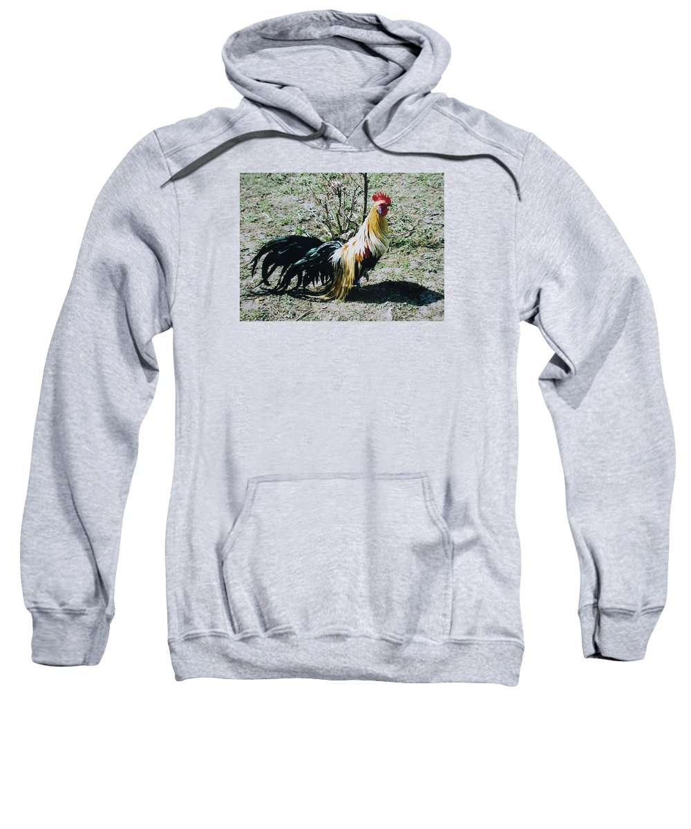 Cock Sweatshirt featuring the photograph I'm Ready... by Iliyan Bozhanov
