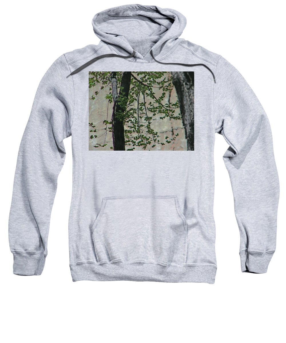 Abstract Sweatshirt featuring the photograph Impression Of Wall And Trees by Lenore Senior