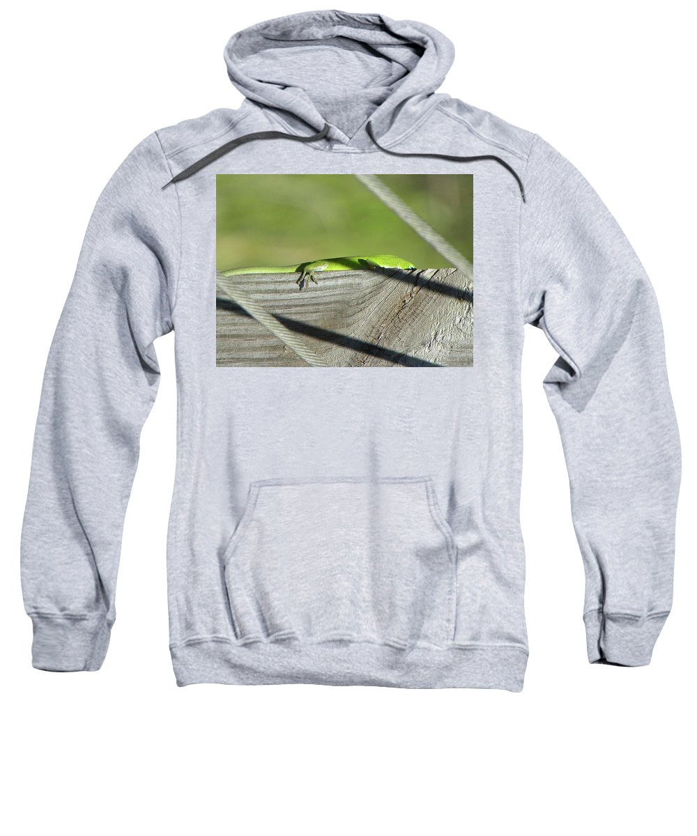Lizard Sweatshirt featuring the photograph In Hiding by Shannon Turek