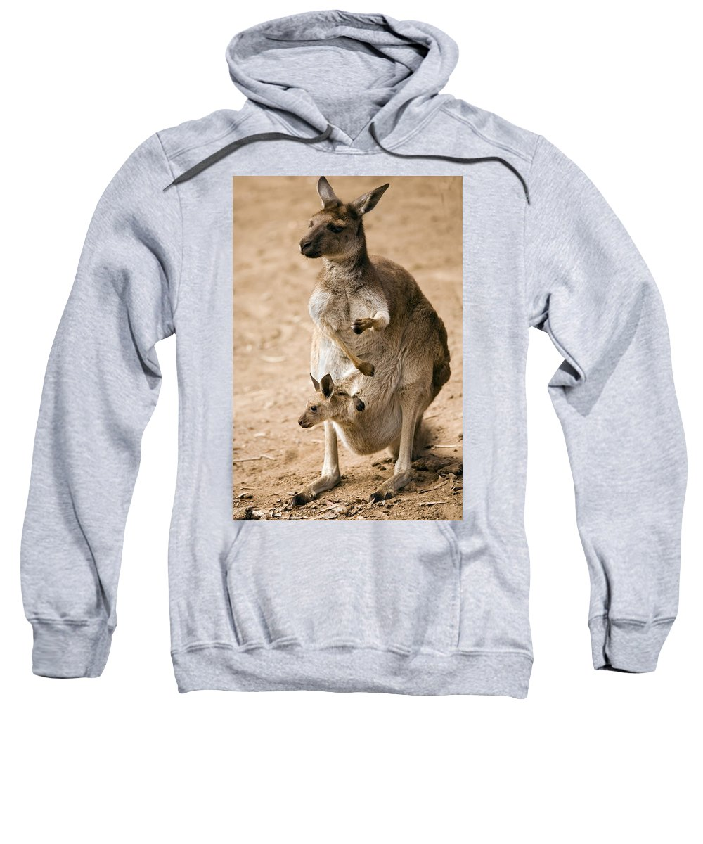Kangaroo Sweatshirt featuring the photograph In Mother's Care by Mike Dawson