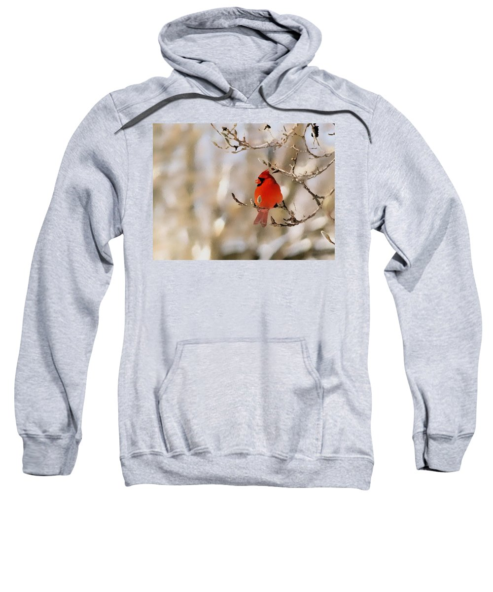 Cardinal Sweatshirt featuring the photograph In Red by Gaby Swanson