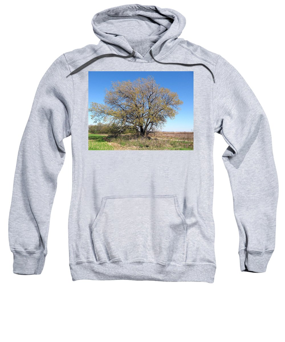 Field Sweatshirt featuring the photograph In The Field by Amy Hosp