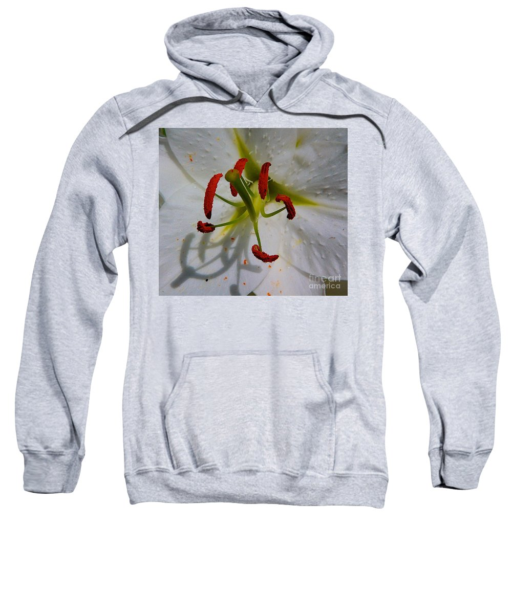 Flower Big Sweatshirt featuring the photograph In The Sun by Robert Pearson