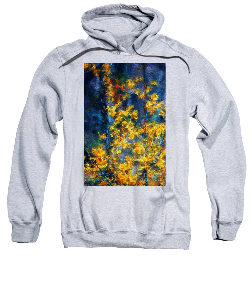 Nature Sweatshirt featuring the photograph In The Woods Again by David Lane