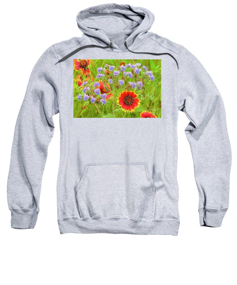 Blanketflowers Sweatshirt featuring the photograph Indian Blanketflowers Gaillardia Puchella by Dave Welling