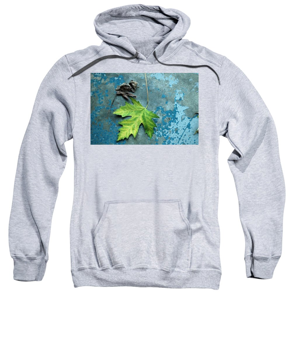 Leaves Sweatshirt featuring the photograph Inevitable by Trish Hale