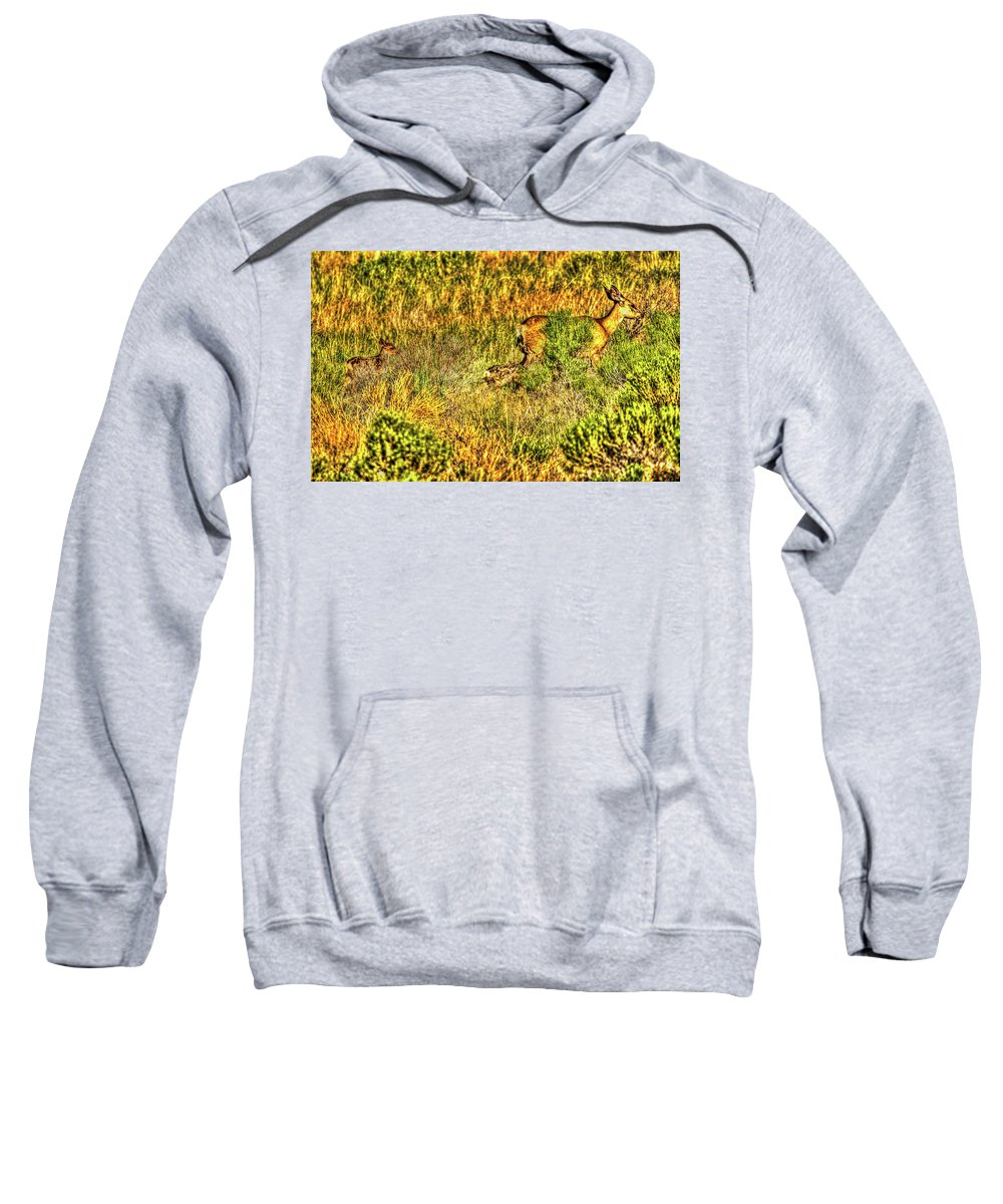 Nature Sweatshirt featuring the photograph Invisible Nature Three Surreal C by John Burnie