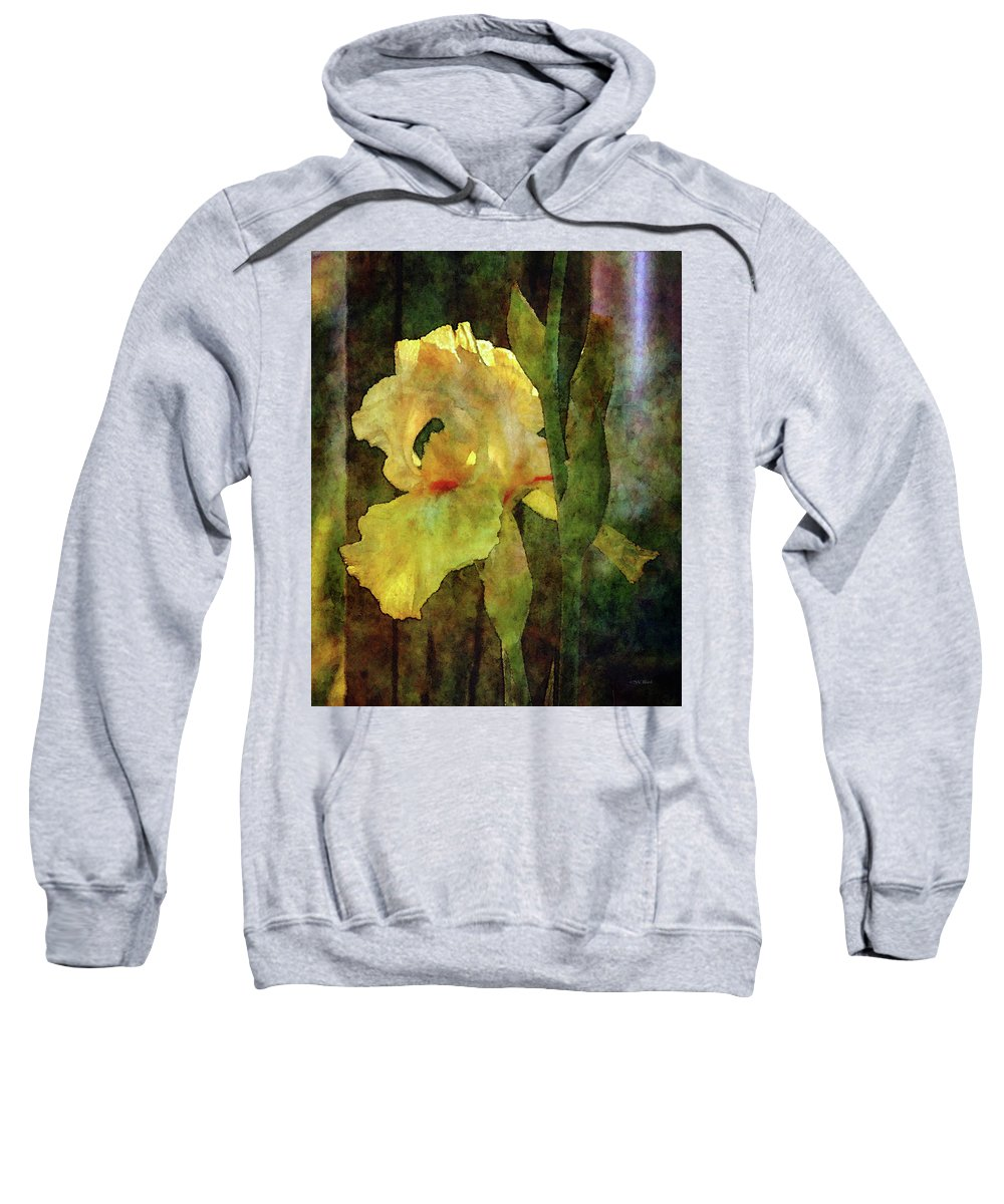 Impressionist Sweatshirt featuring the photograph Iris And Post 6731 Idp_4 by Steven Ward