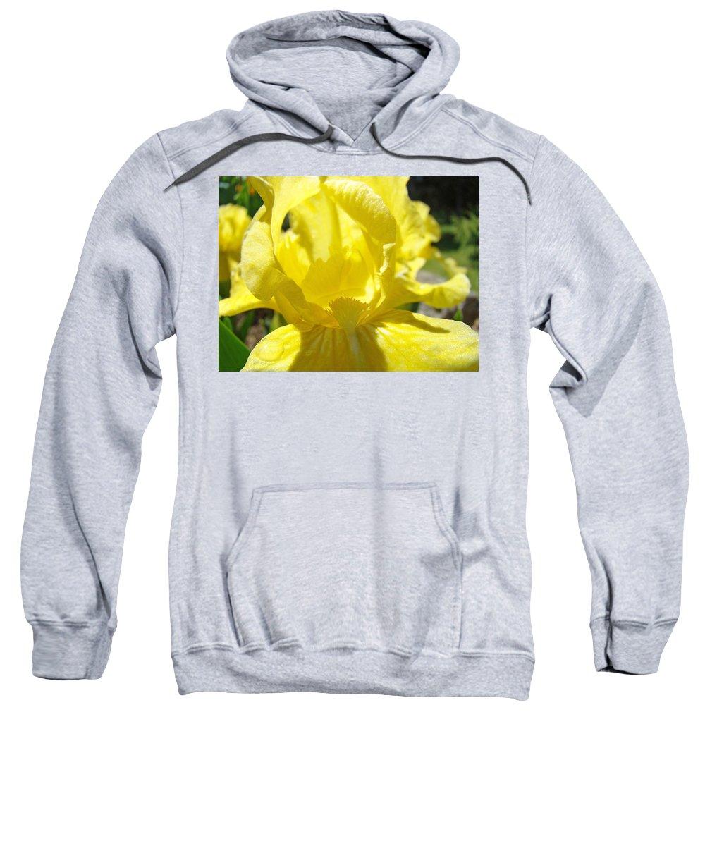 �irises Artwork� Sweatshirt featuring the photograph Iris Flower Yellow Macro Close Up Irises 30 Sunlit Iris Art Print Baslee Troutman by Baslee Troutman