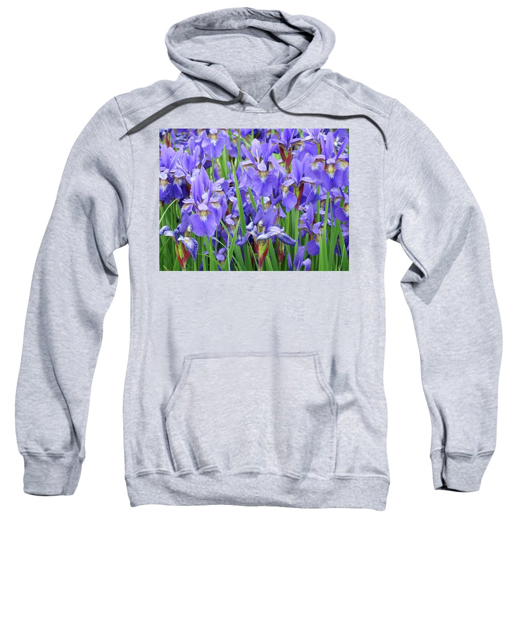 �irises Artwork� Sweatshirt featuring the photograph Iris Flowers Artwork Purple Irises 9 Botanical Garden Floral Art Baslee Troutman by Baslee Troutman