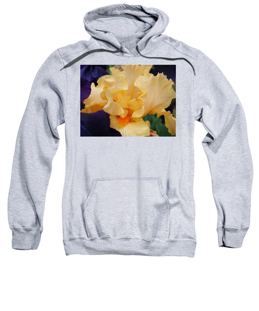 �irises Artwork� Sweatshirt featuring the photograph Irises Art Prints Peach Iris Flowers Artwork Floral Botanical Art Baslee Troutman by Baslee Troutman