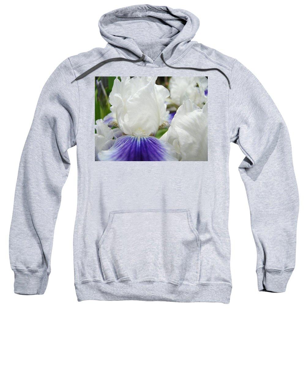 Iris Sweatshirt featuring the photograph Irises Flowers Art Print Gifts White Purple Iris Flower by Baslee Troutman